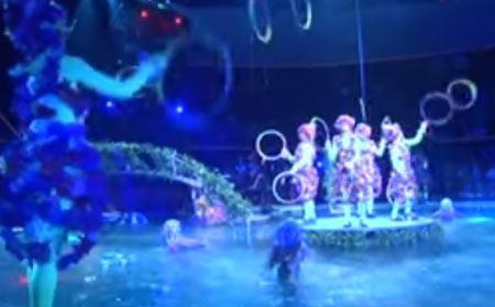 DFM-Нижнекамск дарит слушателям билеты в цирк на воде «AQUA-SHOW»