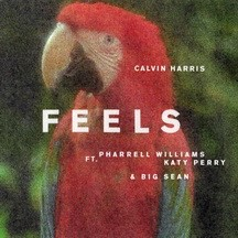 CALVIN HARRIS FEAT. PHARELL WILLIAMS & KATY PERRY & BIG SEAN - FEELS